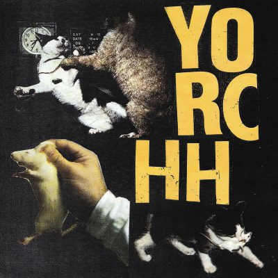 Yorchh